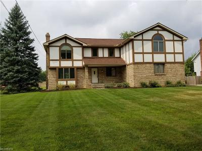 North Royalton Single Family Home For Sale: 8900 Abbey Rd