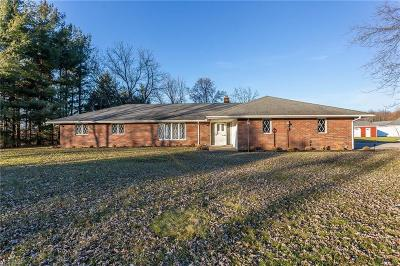 Columbia Station Single Family Home For Sale: 23400 Snell Rd
