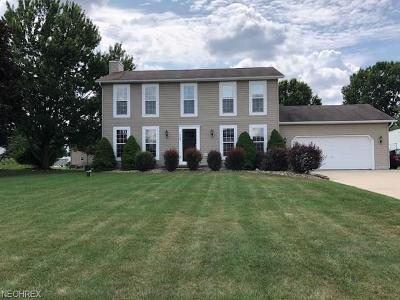 Single Family Home For Sale: 1128 Royce St Northwest
