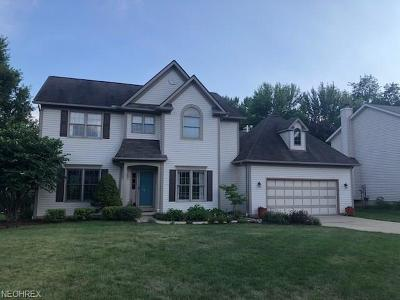 North Royalton Single Family Home For Sale: 4695 Heather Ln