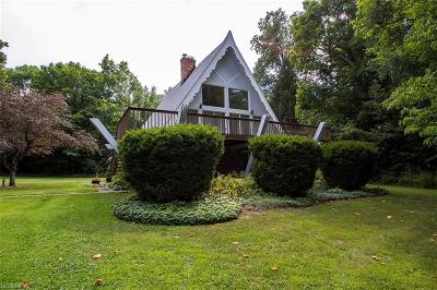 Medina Single Family Home For Sale: 5188 Wedgewood Rd