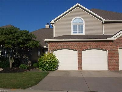 Lorain County Condo/Townhouse For Sale: 263 English Lakes Blvd