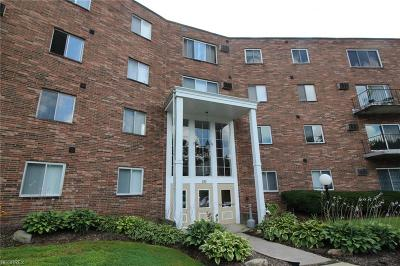 Chagrin Falls Condo/Townhouse For Sale: 355 Solon Rd #108