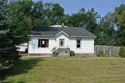 Lorain County Single Family Home For Sale: 12340 Station Rd