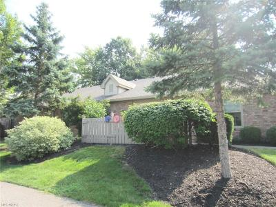 Avon Condo/Townhouse For Sale: 2829 Shakespeare Ln