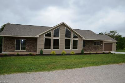 Marietta Single Family Home Contingent: 100 Clare Kennedy Dr