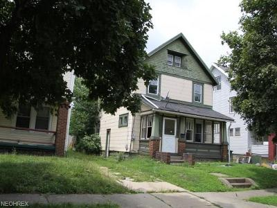 Single Family Home For Sale: 234 Berman Ave