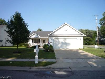 Painesville Single Family Home For Sale: 300 Warner St