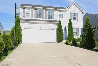 Berea Single Family Home For Sale: 122 Firestone Dr