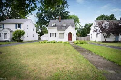 Youngstown Single Family Home For Sale: 136 Homestead Dr