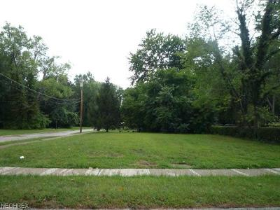Painesville Residential Lots & Land For Sale: 201 Jefferson St