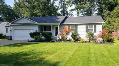 Painesville Single Family Home For Sale: 1171 Garwood Dr
