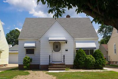 Wickliffe Single Family Home For Sale: 1751 Silver St