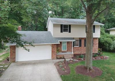 Mentor Single Family Home For Sale: 7355 Connie Dr
