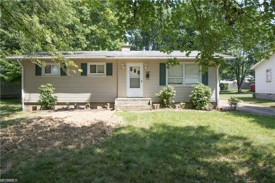 Girard Single Family Home For Sale: 1393 Tomilu Dr