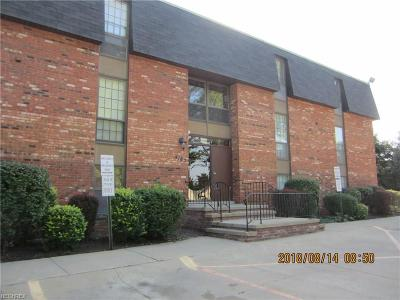 North Olmsted Condo/Townhouse For Sale: 4187 Columbia Rd #124