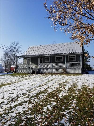 Medina County Single Family Home For Sale: 9303 Chatham Rd