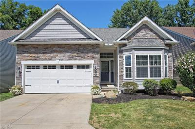 Mentor Condo/Townhouse For Sale: 9867 Country Scene Ln