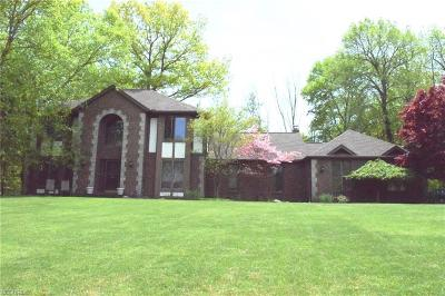 Cuyahoga County Single Family Home For Sale: 113 Countryside Dr