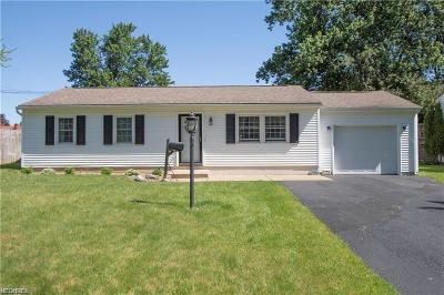 Youngstown Single Family Home For Sale: 5156 Willow Crest Ave