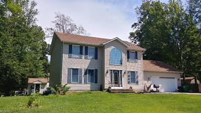 Painesville Township Single Family Home For Sale: 220 Radley Dr