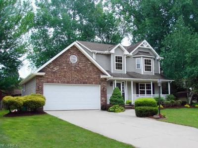 Lake County Single Family Home For Sale: 1512 Amberwood Ln