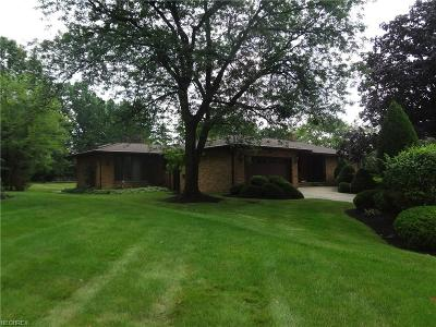 Broadview Heights Single Family Home For Sale: 5341 Millwood Dr