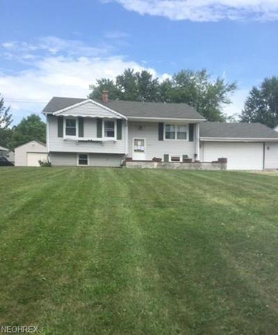 Youngstown Single Family Home For Sale: 693 Notre Dame Ave