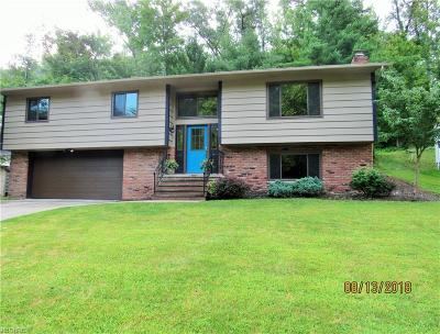 Brecksville Single Family Home For Sale: 8315 Settlers Passage