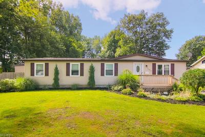 Mentor-On-The-Lake Single Family Home For Sale: 7680 North Rd