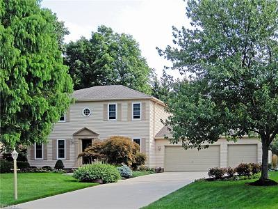 Strongsville Single Family Home For Sale: 9909 Park View Cir