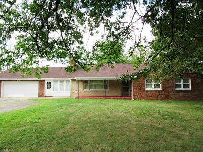 Youngstown Single Family Home For Sale: 970 South Canfield Niles Rd