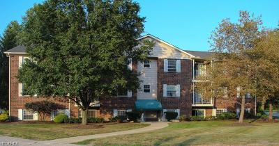 Twinsburg Condo/Townhouse For Sale: 10790 Ravenna Rd #102