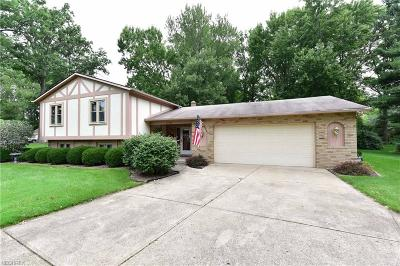 Olmsted Falls Single Family Home For Sale: 25942 Myrtle Ave