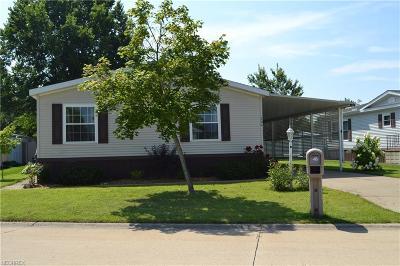 Elyria Single Family Home For Sale: 204 Pin Oak Cir