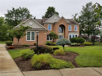Strongsville Single Family Home For Sale: 19555 East Kerry Pl