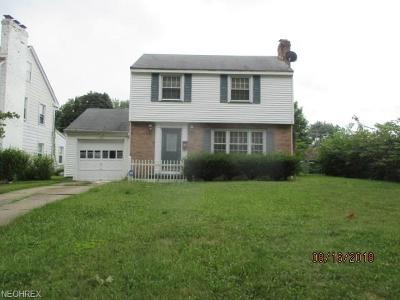 Youngstown Single Family Home For Sale: 19 Pinehurst Ave