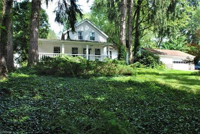 Geauga County Single Family Home For Sale: 9346 Kinsman Rd