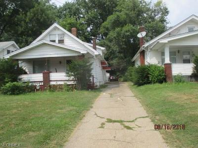 Youngstown Single Family Home For Sale: 326 East Avondale Ave