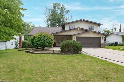 Solon Single Family Home For Sale: 32000 Cannon Rd