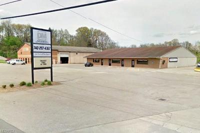 Muskingum County Commercial For Sale: 1165 Newark Rd