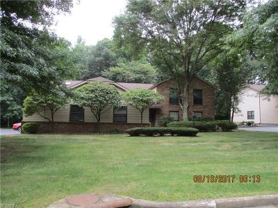 Youngstown Condo/Townhouse For Sale: 1341 Fox Run Dr #B