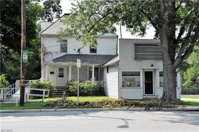 Elyria Single Family Home For Sale: 1601 Middle Ave