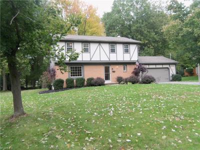 Boardman Single Family Home For Sale: 868 Ewing Rd