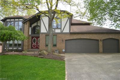 Broadview Heights OH Single Family Home For Sale: $389,000
