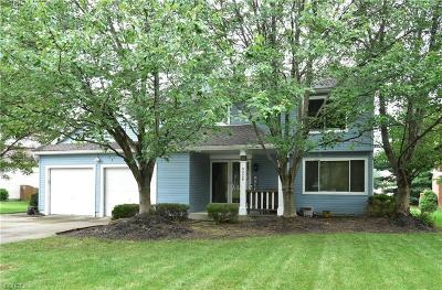 Strongsville Single Family Home For Sale: 9928 Park View Cir