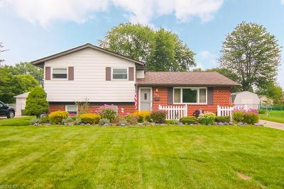 North Ridgeville Single Family Home For Sale: 5879 Joanne Ct