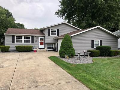 Mineral Ridge Single Family Home For Sale: 1276 Cedarwood Dr