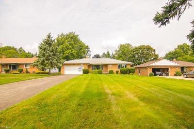 Seven Hills Single Family Home For Sale: 1249 Nemet Dr