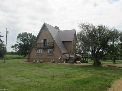 Columbiana County Single Family Home For Sale: 4372 Leetonia Road